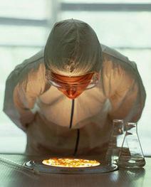 #dibattitoscienza OGM: ISPO, maggioranza degli italiani favorevole a ricerca ed acquisto - Newsfood.com | The Matteo Rossini Post | Scoop.it