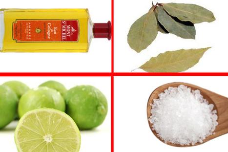 Comment se purifier avec le citron et les feuilles de laurier ? | voyant marabout africain | Scoop.it