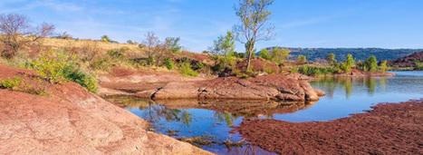 Le changement climatique constitue une des plus grandes menaces pour la biodiversité | Ecosystèmes Tropicaux | Scoop.it