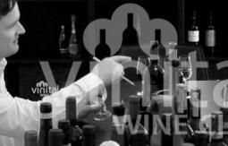 L'accordo tra Slow Wine e Vinitaly Wine Club è un macroscopico ... | All Wines | Scoop.it
