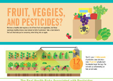 Infographic: Fruit, Veggies, and Pesticides | green infographics | Scoop.it