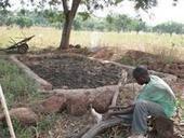 Un collectif d'acteurs pour innover : la gestion des fumures organiques dans les systèmes agropastoraux de l'ouest du Burkina Faso - CIRAD | Ecosystèmes Tropicaux | Scoop.it