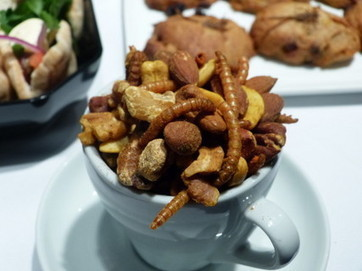 Future Food Salons turn Westerners on to 'ancient' notion of insects as food | eating insects = win | Scoop.it