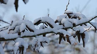 Comment limiter sa consommation d'énergie en période de grand froid ? | DécoBricoJardin | Scoop.it