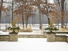 Winter gardens have a beauty all their own. Enjoy its bare branches, sculptural evergreens, and more | Aussiemandas Auspicious | Scoop.it