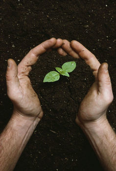 Introduction to Permaculture: Concepts and Resources   HomeSustainability   Scoop.it
