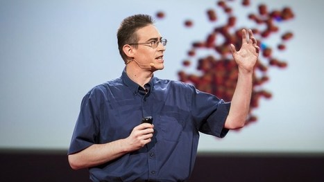 How our microbes make us who we are   Talks   Scoop.it