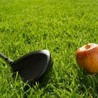 Nutritional requirements for golf