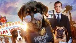 Show Dogs Entriamo In Scena Streaming Ita S