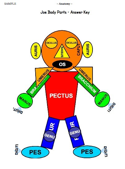 Ascanius | Teacher resources | Net-plus-ultra | Scoop.it