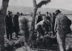 As many as 20 boys in Wineville, Calif., die at the hands of sadistic sex maniac Gordon Stewart Northcott in the late 1920s | Criminology and Economic Theory | Scoop.it