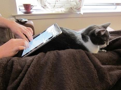 L'absence de nouvel iPad est néfaste pour le marché des tablettes | Livres numériques et applications pour enfants | Scoop.it