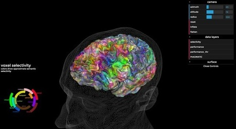 What Happens To Your Brain When It Hears A Story by JOHN BROWNLEE | Critical and creative thinking | Scoop.it