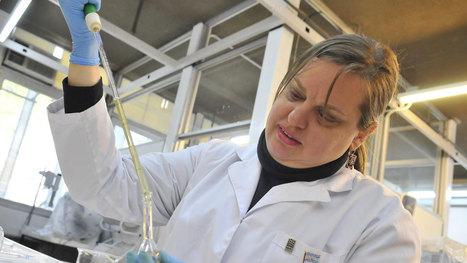 Invenciones con patentes de la UNC | Universidades cordobesas | Scoop.it