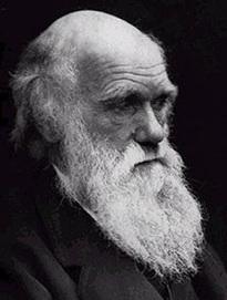 Darwin   Animal cognition and behavior   Scoop.it