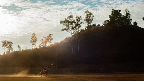 Polo Fades in India on the Backs of Endangered Ponies     New York Times   The Jurga Report: Horse Health, Welfare, and Care   Scoop.it