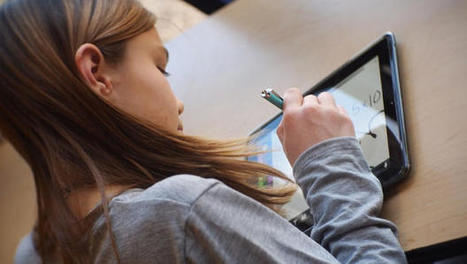 In The Netherlands, Schools Are Letting IPads Do The Teaching   iPadsAndEducation   Scoop.it