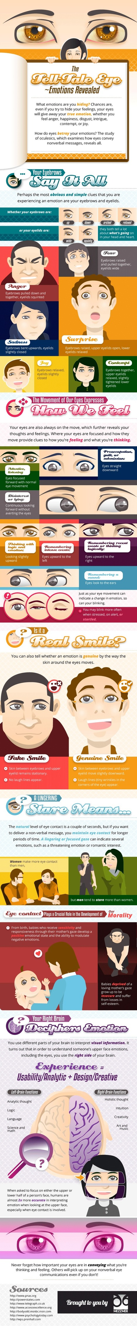 Mezzmer Blog » The Tell-Tale Eye ~ Emotions Revealed | Infographics ideas for Education | Scoop.it