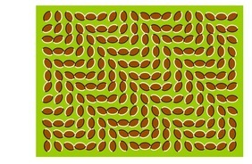 Cool Optical Illusions   Epic Awesomeness   Scoop.it