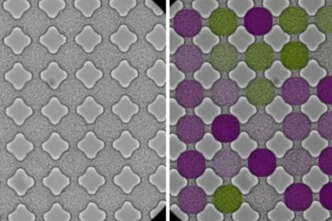 Bacteria, electrons spin in similar patterns: Bacteria streaming through a lattice behave like electrons in a magnetic material | Science et Technique | Scoop.it