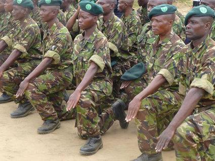 Congo: Poachers score successes against poachers | Wildlife Trafficking: Who Does it? Allows it? | Scoop.it