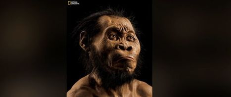 Bones in South African Cave Reveal New Human Relative | CLOVER ENTERPRISES ''THE ENTERTAINMENT OF CHOICE'' | Scoop.it