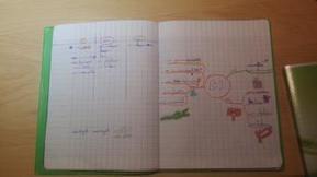 Une carte mentale pour préparer une dictée | Mind Mapping au quotidien | Scoop.it