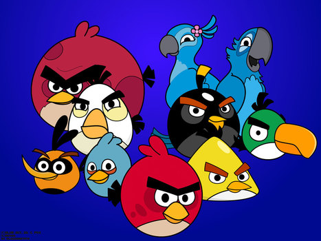 Angry Bird Wallpaper Download Freewallpaperz