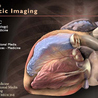 Medic e-learning Case 4 (Chest Pain)