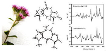 ScienceDirect.com - Tetrahedron Letters - An unusual diepoxyguaianolide from Stevia tomentosa | BiotoposChemEng | Scoop.it