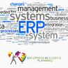 ERP software development services