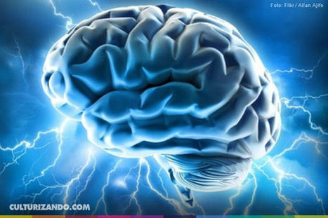 HoyVerde.com: ¡Atención! Estos 11 malos hábitos dañan tu cerebro   NeuroPsicoEducación al Día   Scoop.it