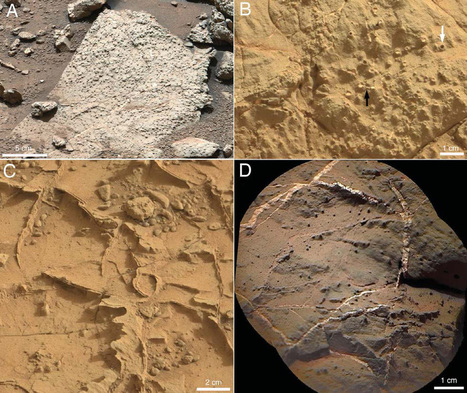 NASA found ancient lake on Mars capable to support life for thousands of years | Amazing Science | Scoop.it
