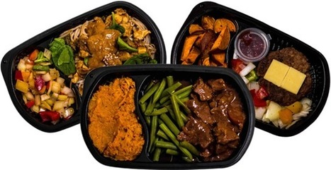 Meal Delivery For Weight Loss Result Plan H