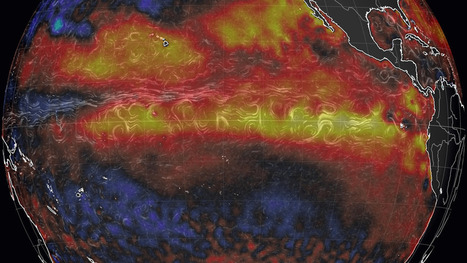El Niño reaches 'strong' intensity, will dramatically reshape world's weather   NGSS Resources   Scoop.it