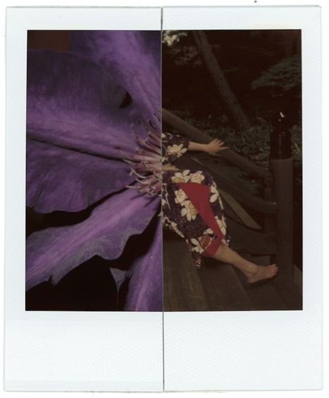 http://www.aperture.org/blog/nobuyoshi-arakis-polaroids/ | Master Photographers | Scoop.it