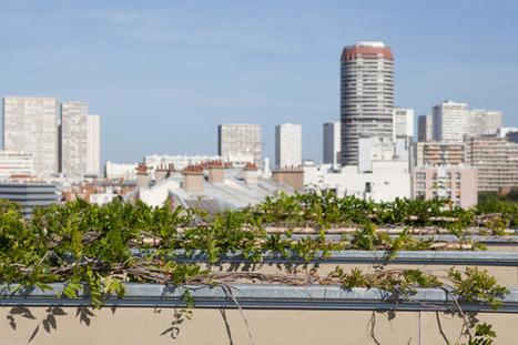 #Parisculteurs : découvrez les 47 sites retenus pour végétaliser Paris | Agriculture urbaine et rooftop | Scoop.it