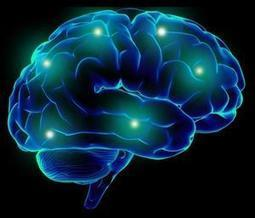 10 Ways Your Brain Is Smacking You Around | Non-profit Leadership | Scoop.it