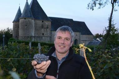 Thiérache : première vendange du nectar ardennais ce dimanche | Route des vins | Scoop.it