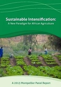 2013 Report - Sustainable Intensification | Piccolo Mondo | Scoop.it