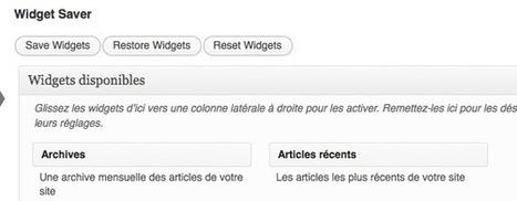 WordPress : Sauvegarder la configuration des widgets avec Widget Saver | Nouvelles technologies, web, développement | Scoop.it