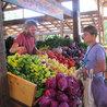 Organic CSA Farming