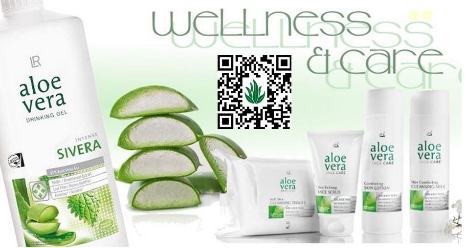 Wie man die Aloe vorbereitet, um Gewicht zu verlieren