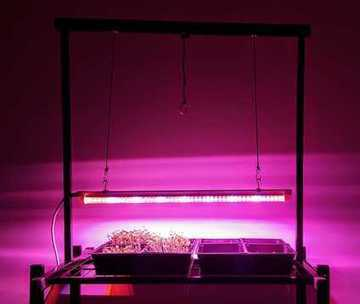 Farmers Market Grow Lights | Vertical Farm - Food Factory | Scoop.it