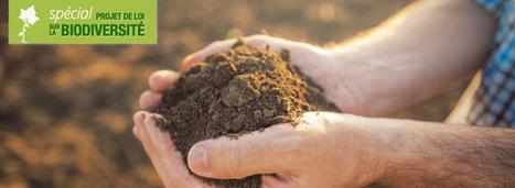 La loi biodiversité reconnaît les sols comme patrimoine commun de la nation | Méli-mélo de Melodie68 | Scoop.it