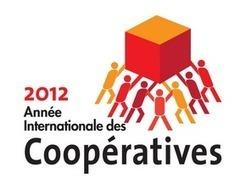 Étude Deloitte : Les coopératives, sources de financement diversifiées, immense besoin de capitalisation ! | Bretagne en transition | Scoop.it