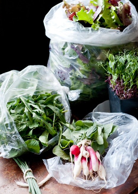 Living Well: 6 Secrets to Properly Washed & Stored Produce | Horticulture | Scoop.it