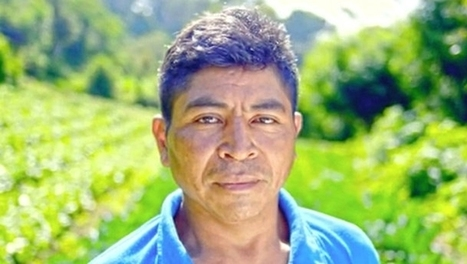 Crop Protection Partnership is a Game-Changer in Honduras | Modern Agricultural Biotechnology | Scoop.it