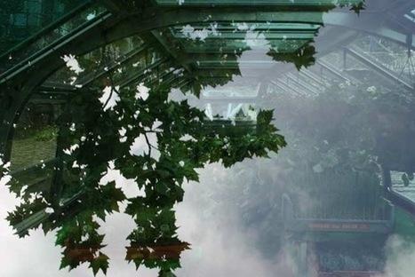 Boatanic : une ferme urbaine flottante !   Urban Greens Watch   Scoop.it