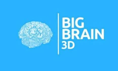 The Most Accurate Map of the Brain - OpenMind   Science technology and reaserch   Scoop.it